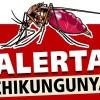 dengue-chikungunya